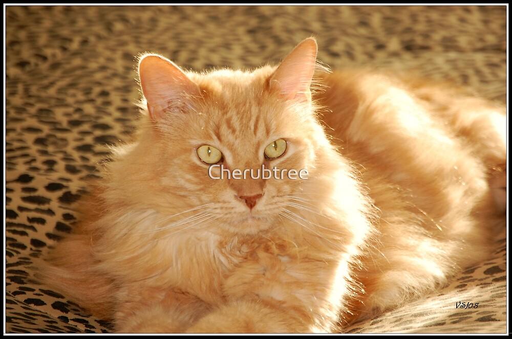 Dusty: My Lion by Cherubtree