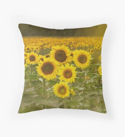 Sunlit field of Sunflowers Throw Pillow