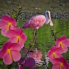 Spoonbill through the flowers by TJ Baccari Photography
