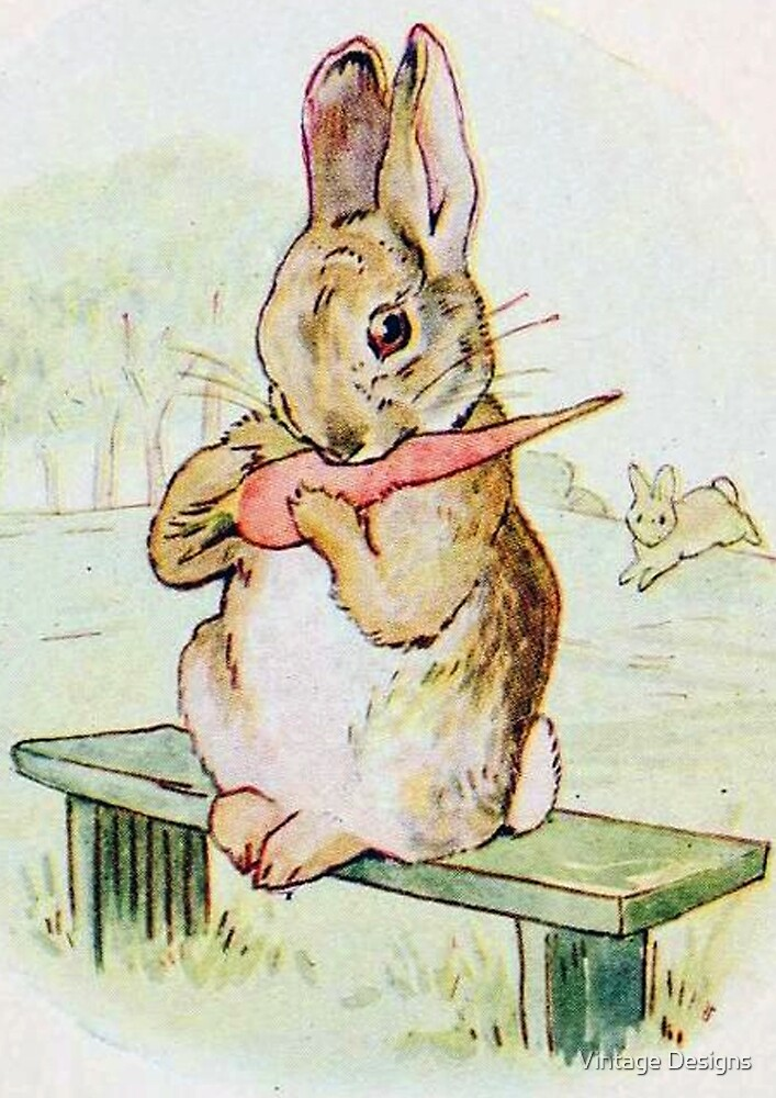 A cute rabbit eating a carrot by Beatrix Potter by Vintage Designs