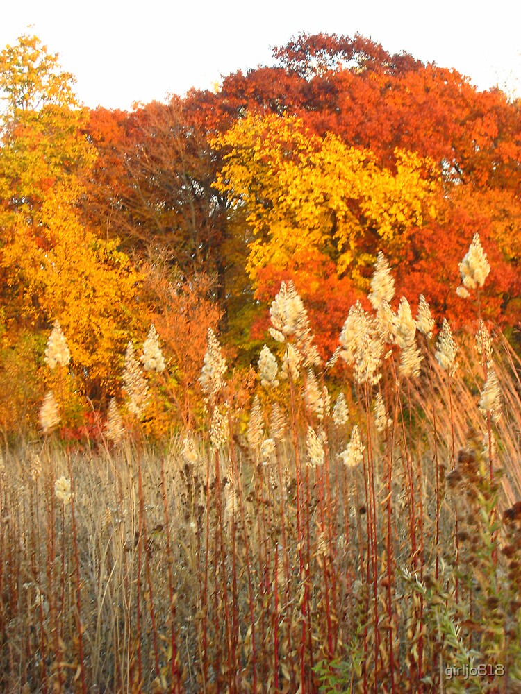 Autumn Evening by girljo818