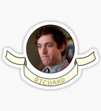 Richard Hendricks Pied Piper Silicon Valley Sticker Sticker