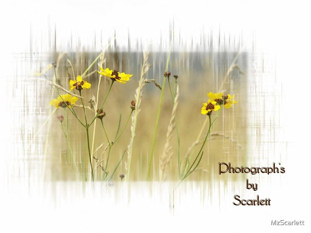 Yellow Wild Flowers by MzScarlett