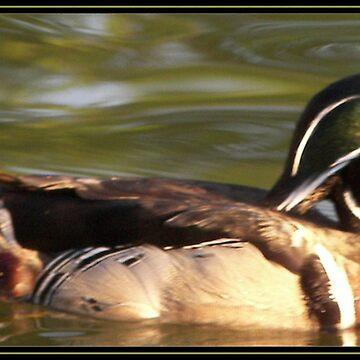 Duckie by MzScarlett