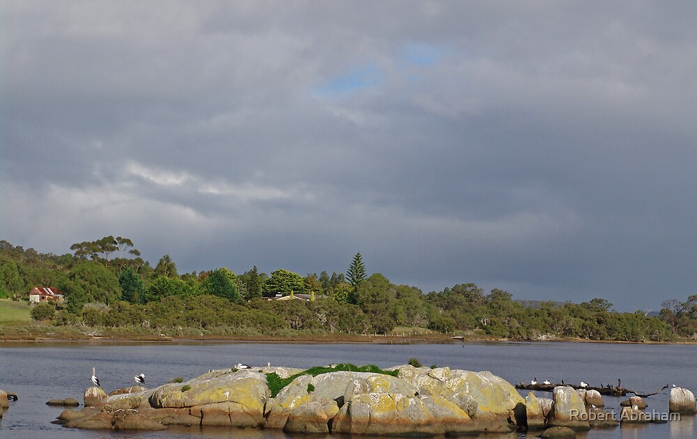Kalgan River by Robert Abraham