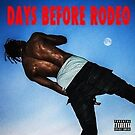 Days Before Rodeo Sticker by kaitlynhooks