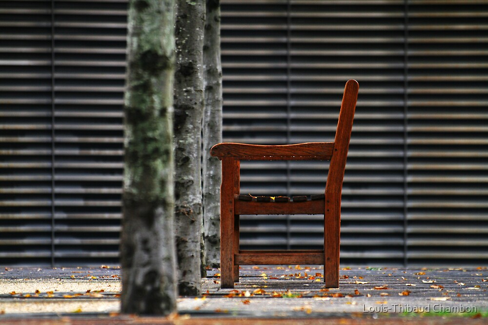 Lonely bench - November by Louis-Thibaud Chambon