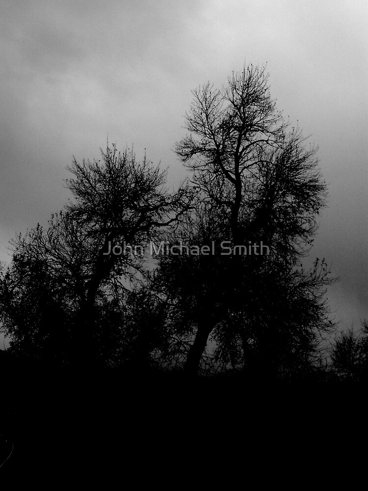 November Sky by John Michael Smith