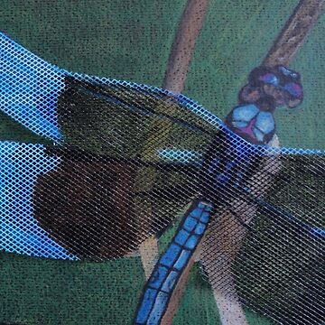 Dragonfly by mayden