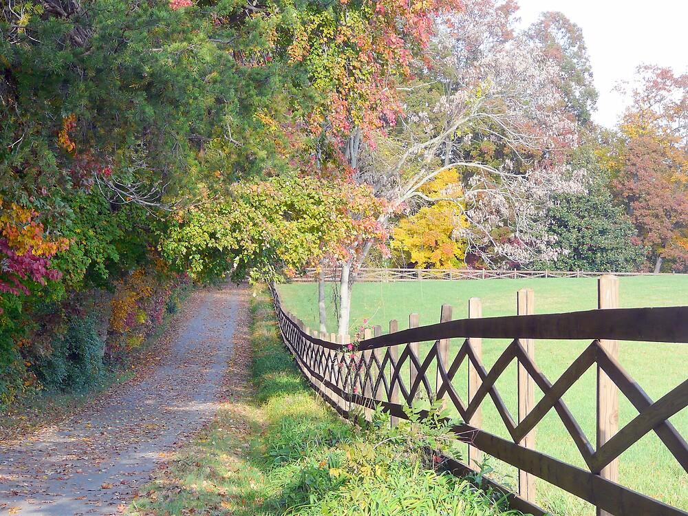 Splendid fall day by rasnidreamer