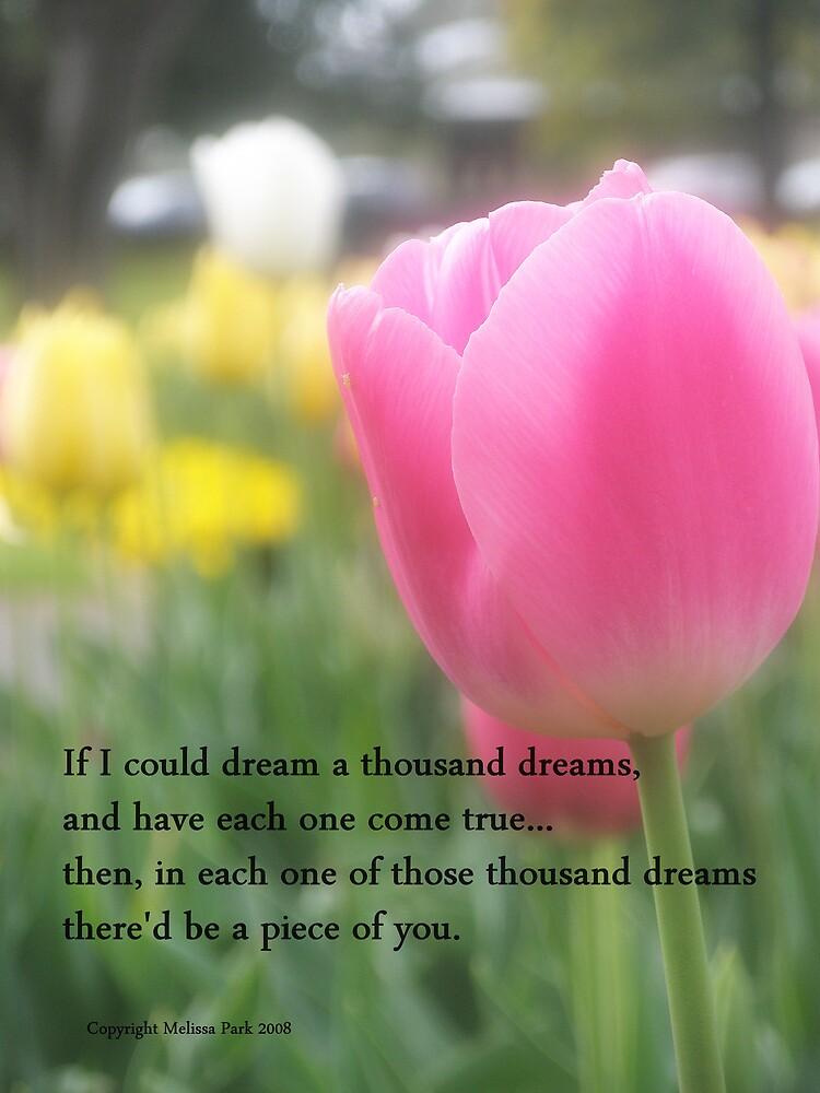 A Thousand Dreams by Melissa Park