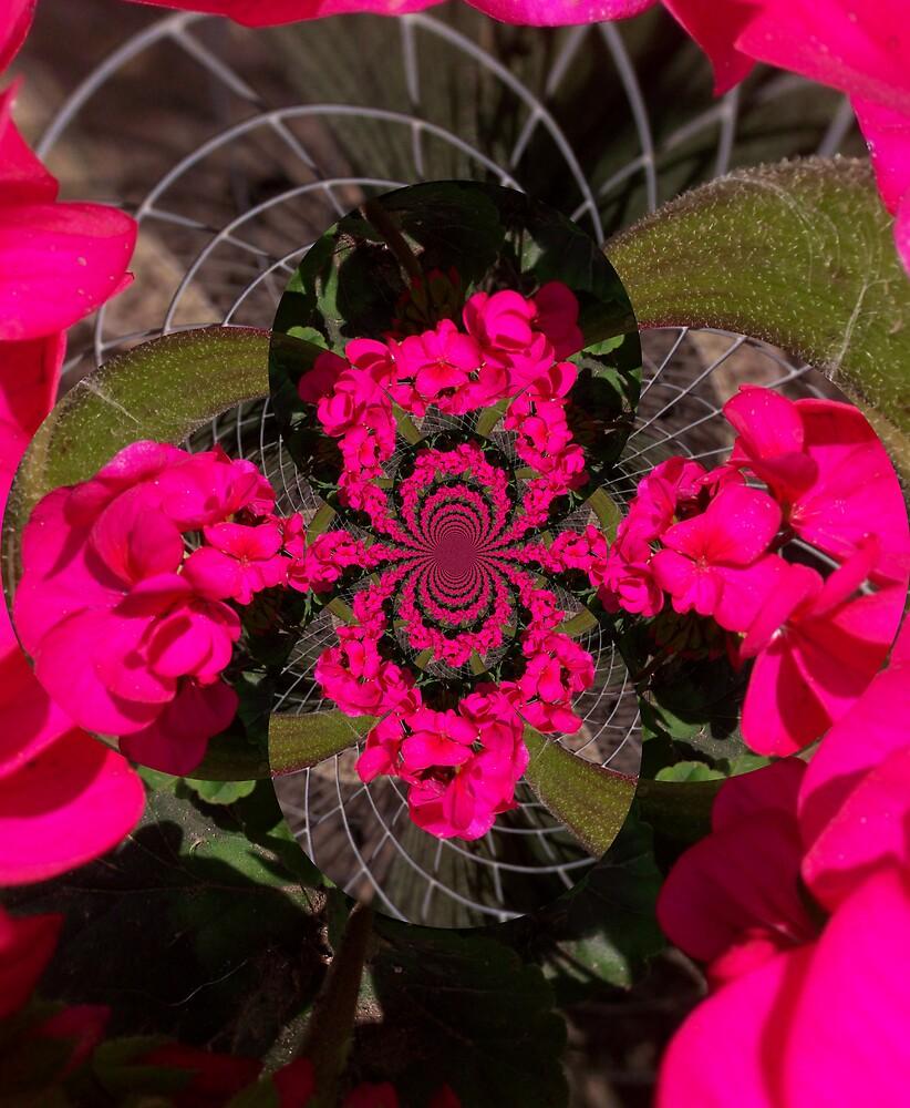 distort flowers by natasha nelson