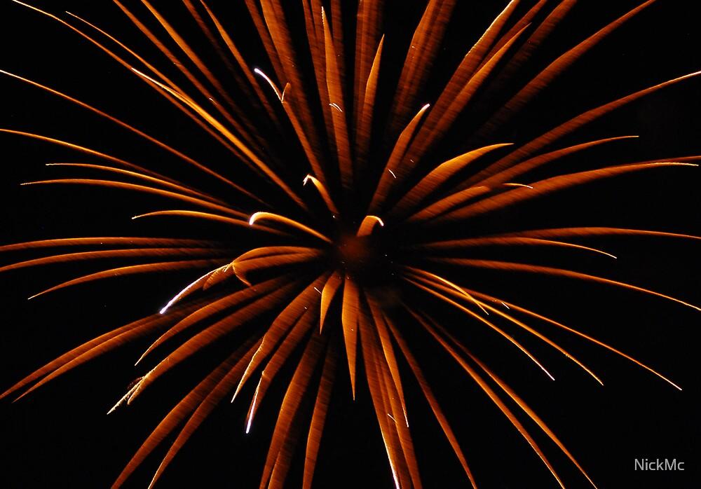 Firework Flower by NickMc