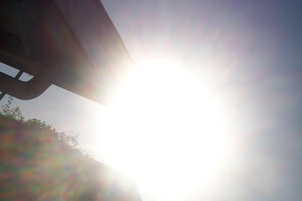 Bright sun by bviva733