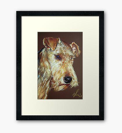 Terrier Framed Print