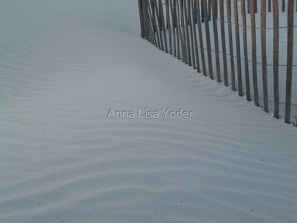Sea Fence, Hunting Island Dusk by Anna Lisa Yoder