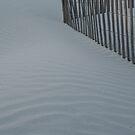 Sea Fence, Hunting Island Dusk by Anna Lisa Yoder