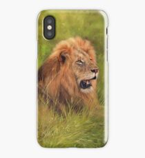 Male Lion Resting iPhone Case/Skin