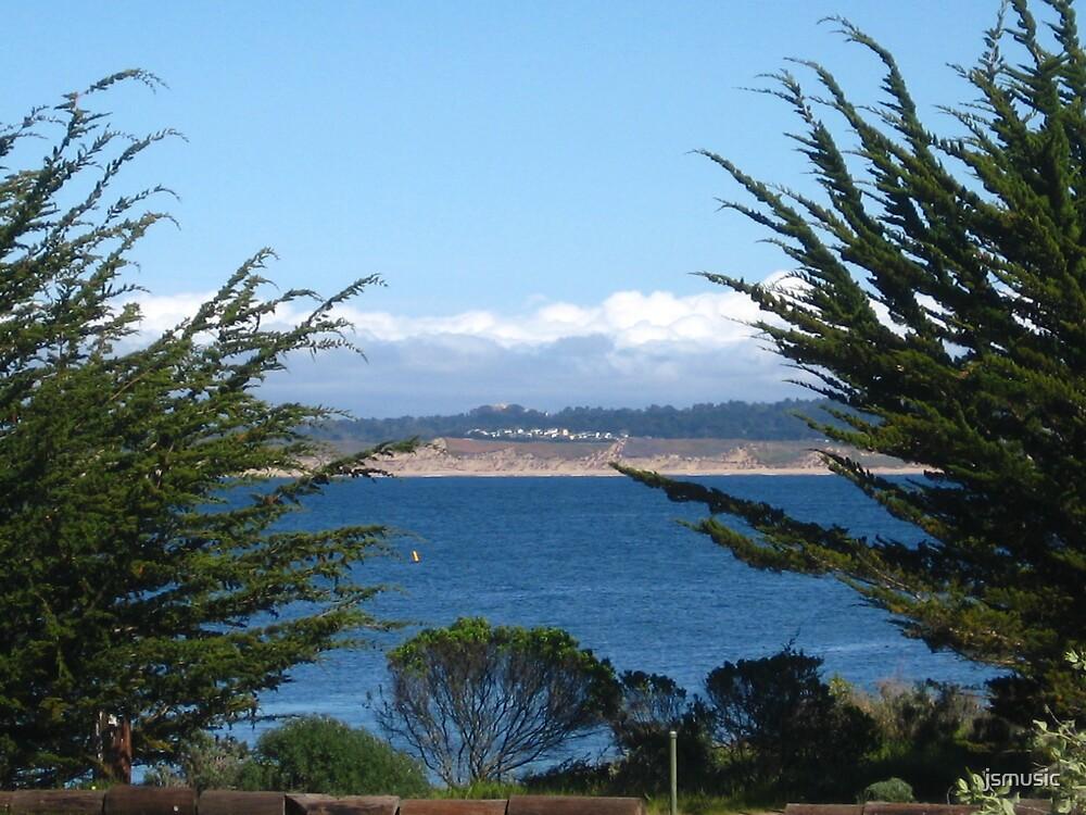 Monterey seascape by jsmusic