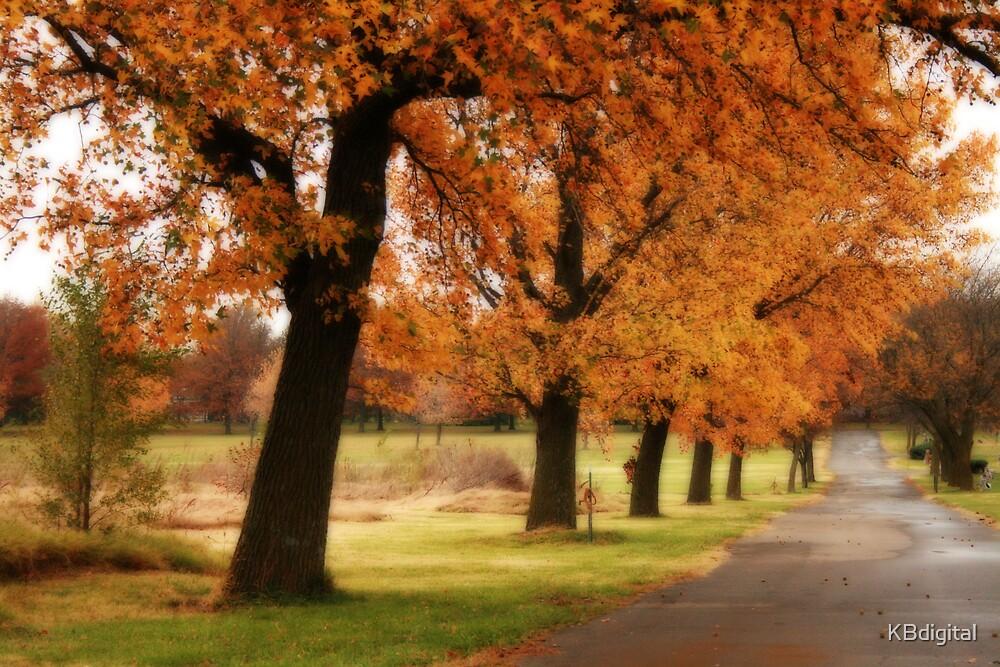 Fall Lane by KBdigital