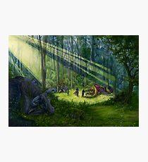 The Dragon Garden Photographic Print
