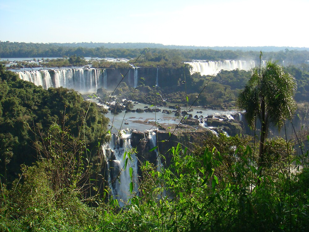 Iguaçu's Falls by RLucio