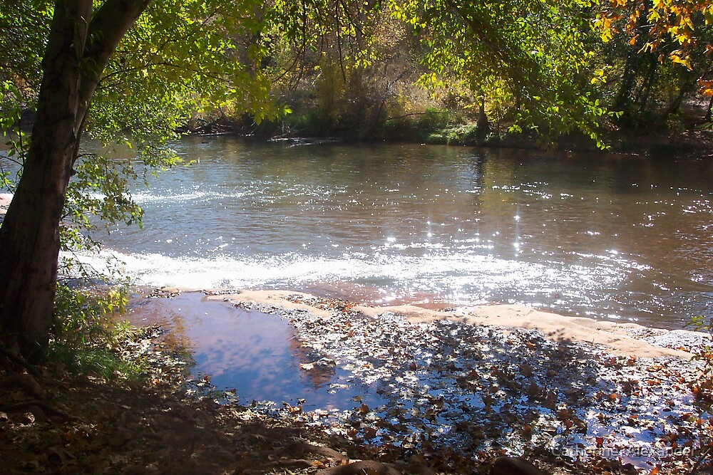 Peaceful Creek by Catherine  Alexander