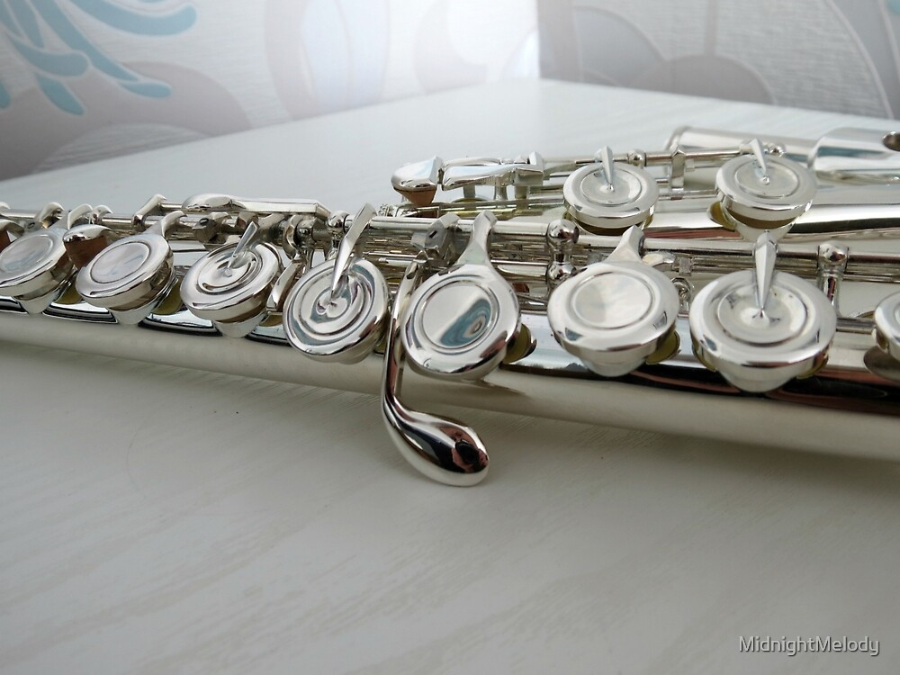 Silver Keys - Flute Close-up by MidnightMelody