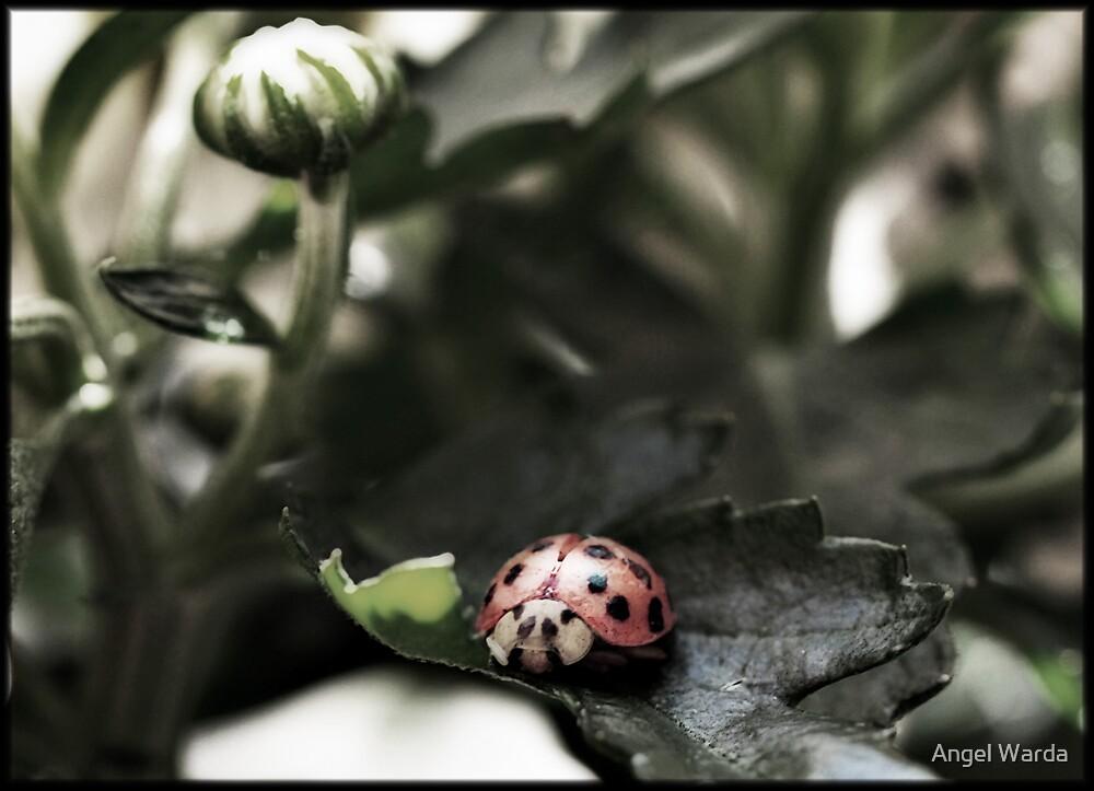 in her own little world by Angel Warda