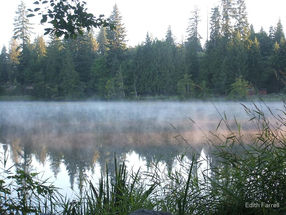 Lake Gardner by Edith Farrell