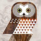 Saw Whet Owl by Scott Partridge