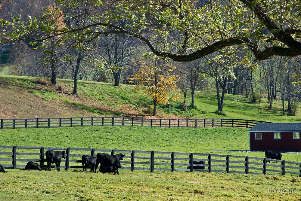 Fall Farm by barkeypf