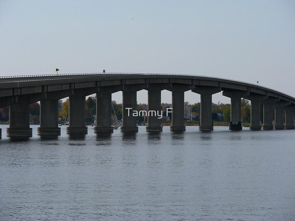 Bridge to NY by Tammy F