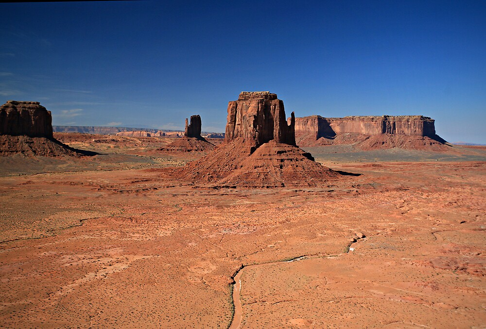 Desert Sentinals by Randy Weekes