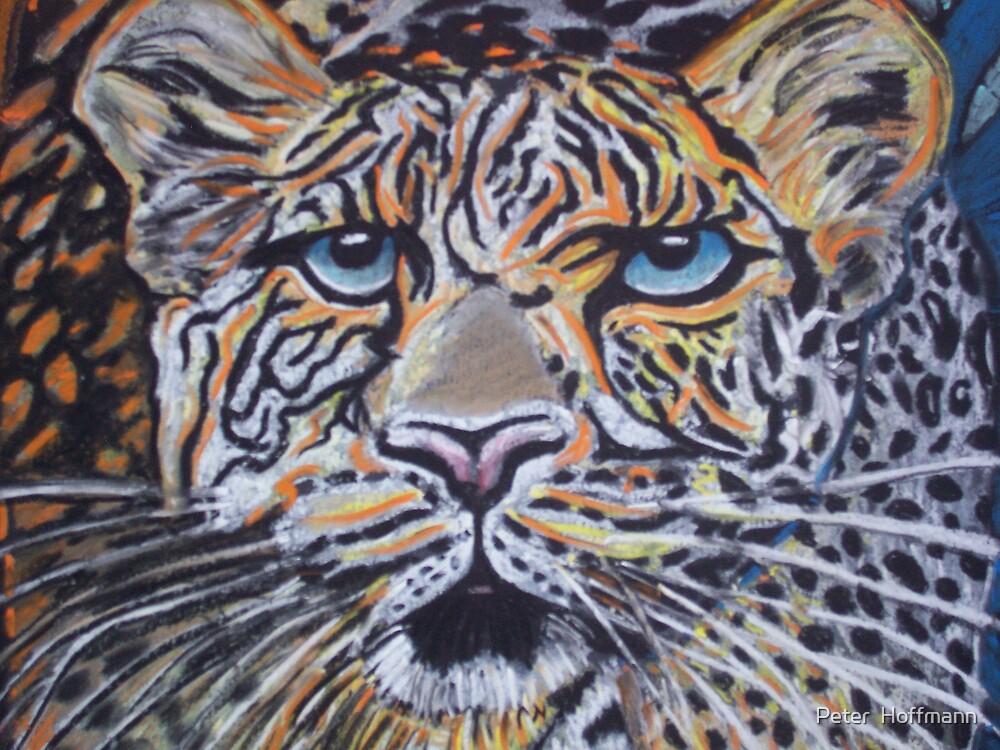 bigcat by Peter  Hoffmann