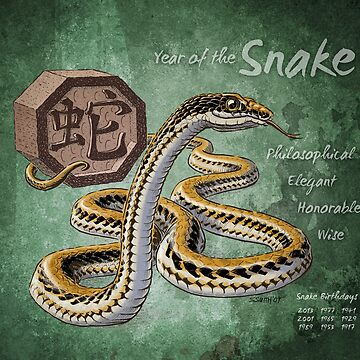 Year of the Snake Calendar by stephsmith