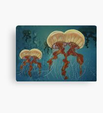 Mutant Jellyfish Canvas Print