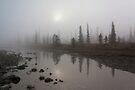 Sunrise Over The Kootenay Plains by Alex Preiss