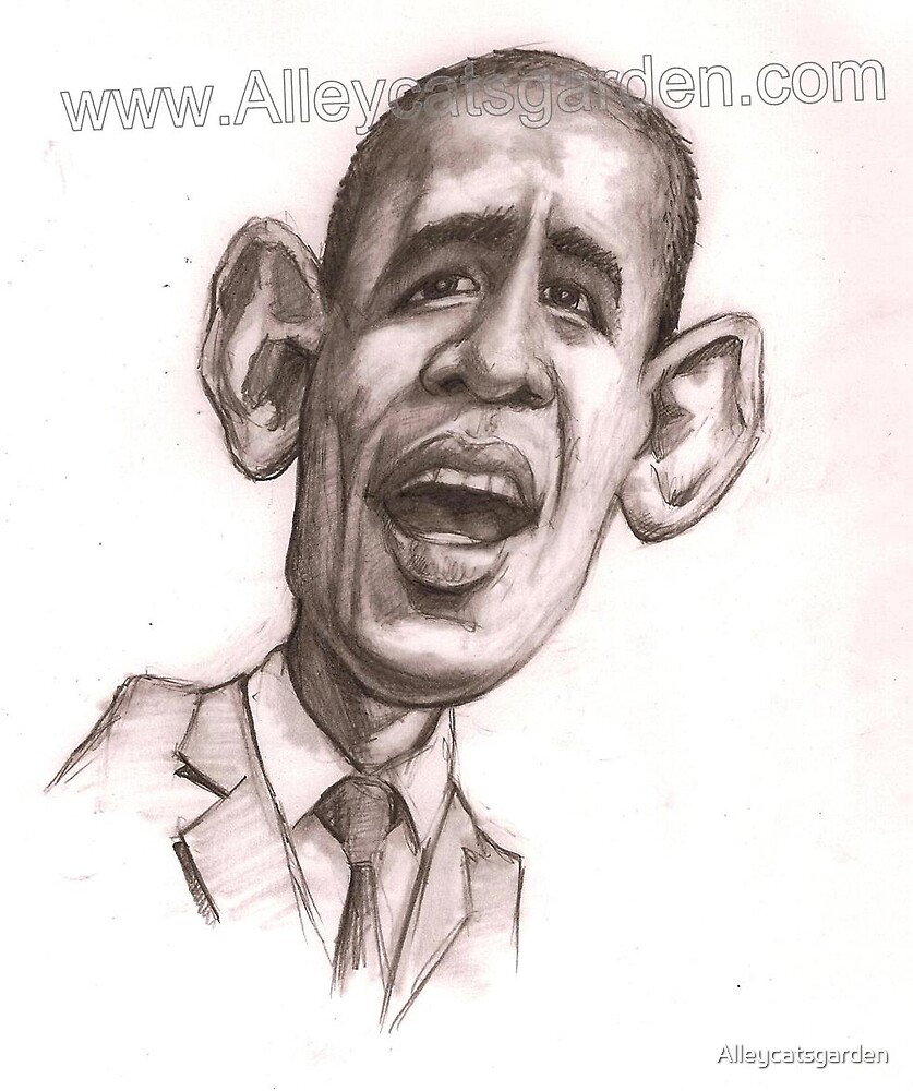 Barak Obama - Barry the Bomber by Alleycatsgarden