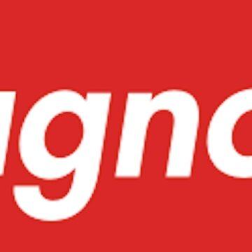 MAGNOLIA Playboi Carti Druck von budgetnudest