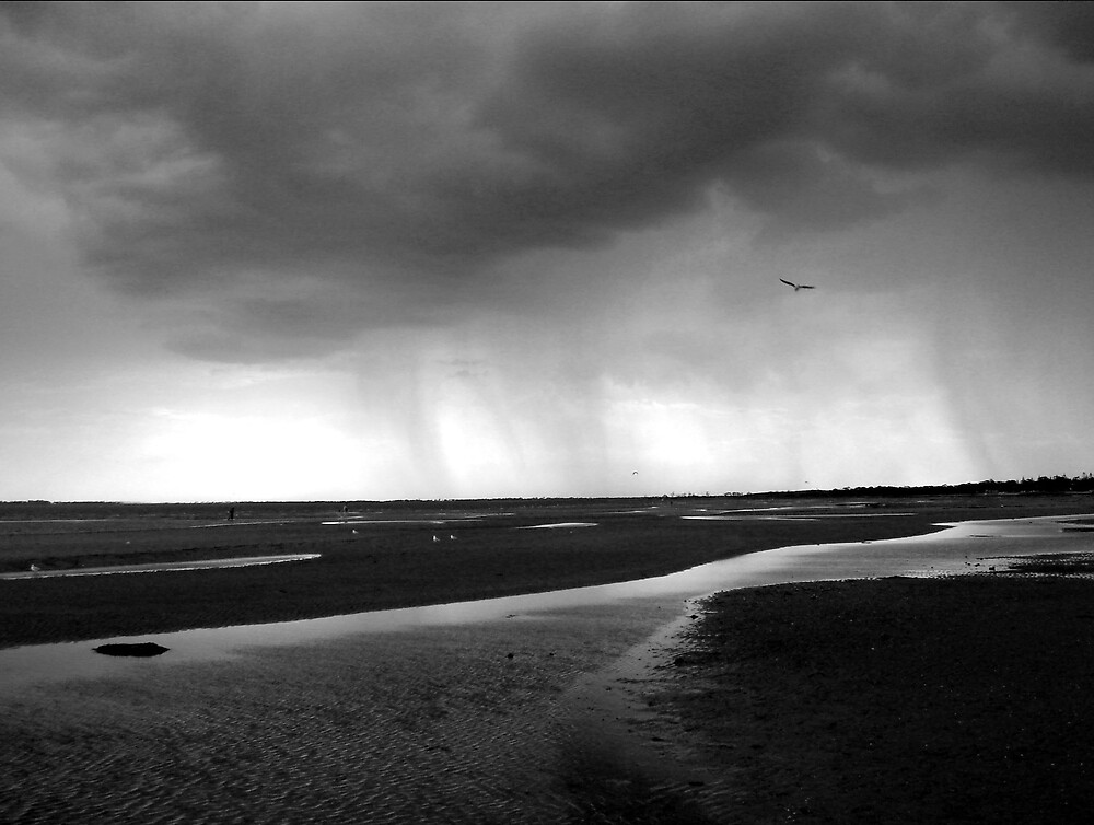 Storm Approaching by Simmone