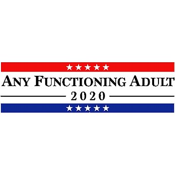 ANY FUNCTIONING ADULT 2020 by serendipidy