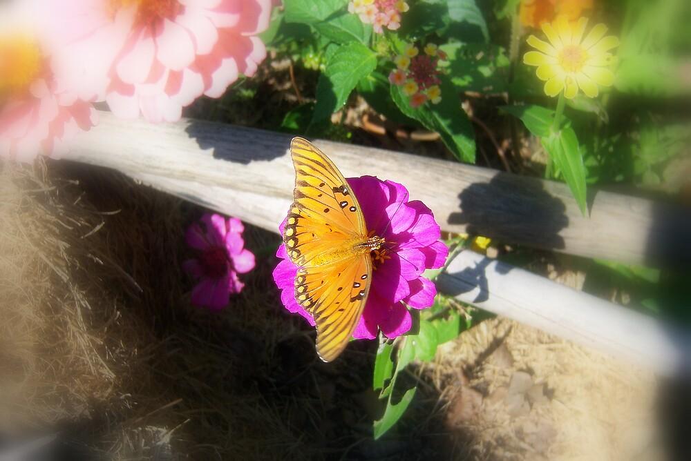Butterfly Gardening by DottieDees