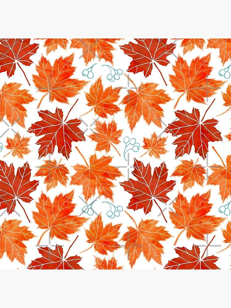 Autumn leaves against white by adenaJ