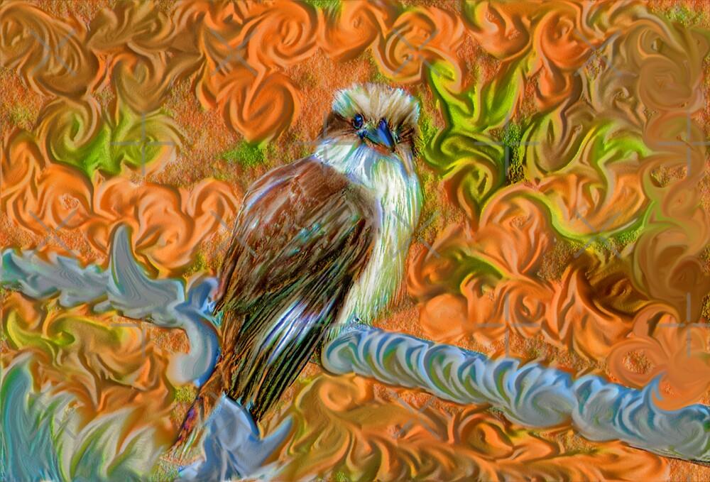 Kookaburra by Sandra Chung