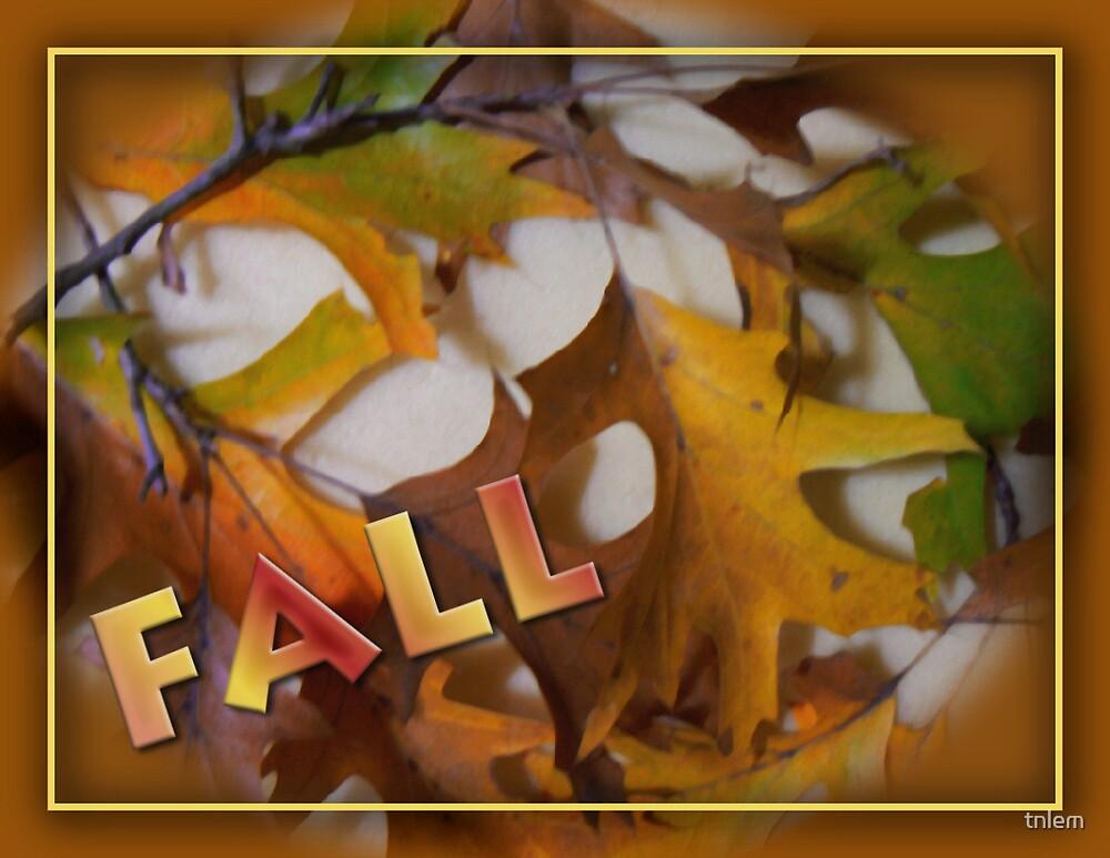 FALL by tnlem