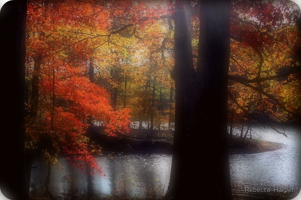 Fall In Indiana by Rebecca  Harper