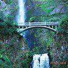 Multnomah Falls by joancaroline