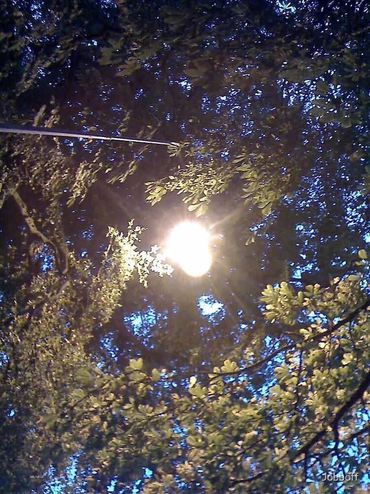 winters light by Jobboff