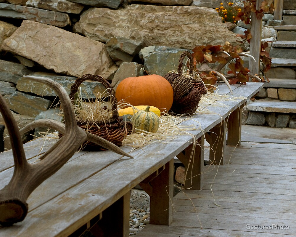 Fruits of Autumn by GesturesPhoto